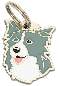 BORDER COLLIE BLUE ODD EYED - pet ID tag, dog ID tags, pet tags, personalized pet tags MjavHov - engraved pet tags online
