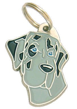 GREAT DANE BLUE MERLE - pet ID tag, dog ID tags, pet tags, personalized pet tags MjavHov - engraved pet tags online
